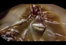 The Pylos Combat Agate among the Infinite Realms